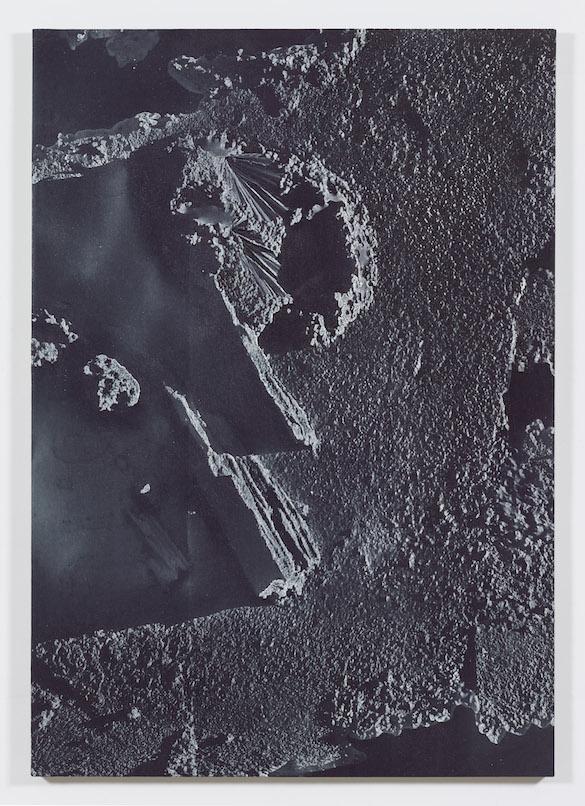 Daniel Lefcourt, Anti-Scan, 2015. Pigment and urethane on canvas, 203,2 x 142,2 cm. Courtesy Daniel Lefcourt ; Campoli Presti, London / Paris.