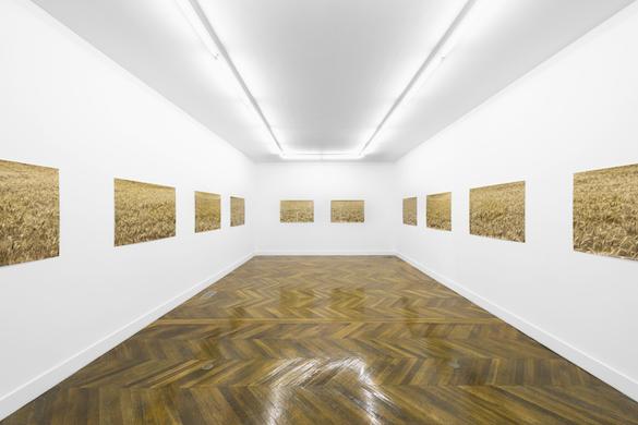 Pierre Joseph. « Hypernormandie », La Galerie, Noisy-le-Sec. Photo : Pierre Antoine. Courtesy galerie Air de Paris.